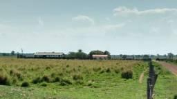Fazenda c/ 1.000he, 620he formados, Itiquira MT