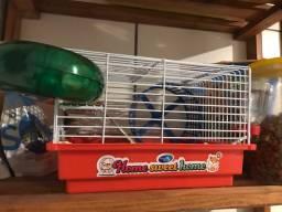 Hamster anão russo+gaiola completa+ração&serragem