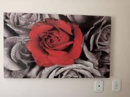 Vendo quadro rosa vermelha em Itabaiana-SE