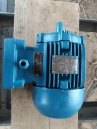 Motor WEG<br>1 cv <br>1720 rpm