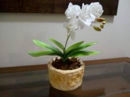 Vaso decorativo orquídea.