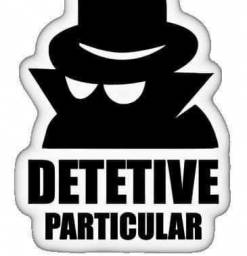 Investigador detetive particular