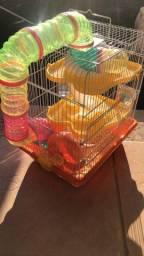 Gaiola com hamster anão