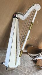 Harpa Paraguaya nova, 36 cordas