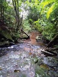 Lindo sítio, pequenas cascatinhas, mato nativo, lugar tranquilo
