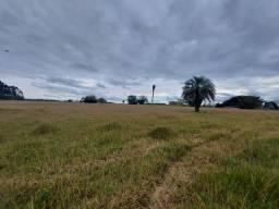 Velleda of sitio 8 hectares, 2 casas e excelente pomar, ótimas pastagens