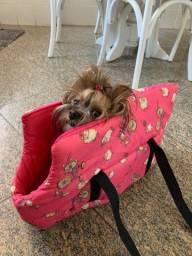 Bolsa pra carregar Pet pequeno porte
