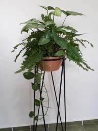 Suporte de chão para plantas