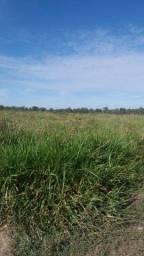 Fazenda c/ 3.741he, c/ capac. p/ 2.000 novilhas, Araguaiana-MT