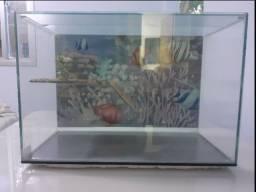 Aquaterrário com plataforma para tartarugas tigre d'água e répteis