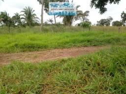 Fazenda para pecuária está vedada de pasto