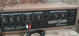 Amplificador e caixa com fone de 12 e duas cornetas.