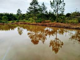 Oportunidade, Terreno chácara 3.500m2 ( 2 lago grandes ) Piedade/SP favor ler anúncio