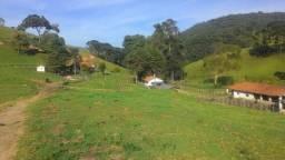 Belíssimo Sítio com 10 alqueires, a 3 km da Cidade de Delfim Moreira-MG
