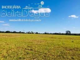 Fazenda 25 Alqueirao Pecuaria Dupla Aptidão
