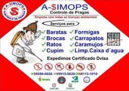 Dedetização detetização Sanitização Ratos baratase carrapatos e cupins