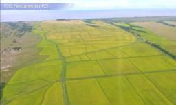 Velleda of 900 ha camaquã, água p/ lavoura de 550 ha, 60 mil sacas de silos