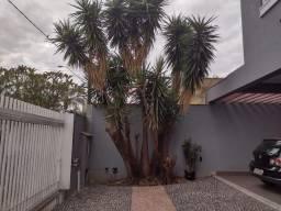 Casa à venda com 4 dormitórios em City ribeirao, Ribeirao preto cod:V19485