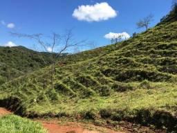 VENDO sítio na região de PIRANGA-MG