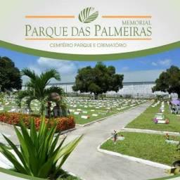 Sepultura Parque das Palmeiras
