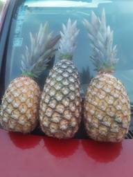 Vendo abacaxi pérola e havaino entrego na região de rio preto acima de 100 frutas