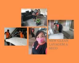 Lavagem a seco e higienização