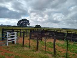 Sitio na Região de Paraguaçu paulista