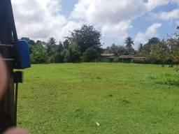 Título do anúncio: Área/Granja na Guabiraba 9 hectares, por trás da Natto