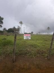 Terreno em área rural.