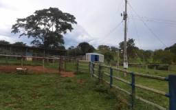 Fazenda 113 alqueires ( 547 hectares ) Ipameri-GO