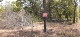 Vendo chacara santa maria 2.3 hectares R$ 380.000,00 ( asfalto)