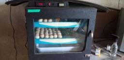 Chocadeira  100 ovos