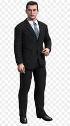 Vende terno Gentleman