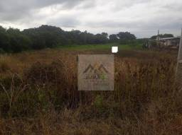 Terreno para alugar, 10000 m² por r$ 10.000/mês - campeche - florianópolis/sc