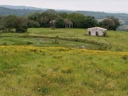 R- 418 Ótima Oportunidade Vendo propriedade com 8.43 hectares em Morro Redondo