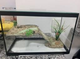 Aquário/ Terrário para tartaruga