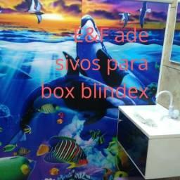 Adesivos para box blindex
