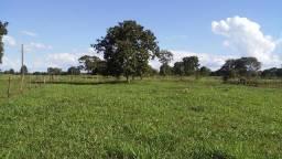 Belo sítio 15 hectares -Terenos, MS, Brasil