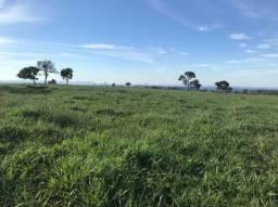 8271 | Fazenda à venda com 1 quartos em ZONA RURAL, SONORA
