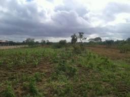 terreno aqui em santanopolis 250Mts