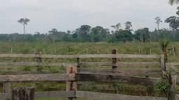 Venda de Fazenda, terra, imóvel, sítio