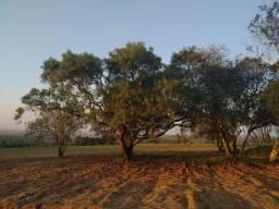 Velleda oferece fantástica fazenda a 350m da RS 040