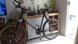 Bicicleta Raleigh usa m50