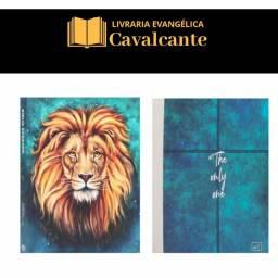 Bíblias média e caixa de promessas