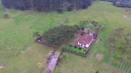Sitio em Santo Antônio 5Ha Fundos para o Rio dos Sinos com Casa, Pomar. Peça o Vídeo