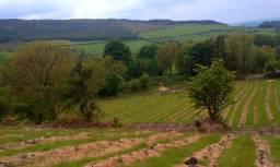 Sitio próximo a Paudalho com Fontes de Água Alcalina Ph 10