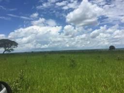 Fazenda 1039 hectares. Paraíso das Águas MS. Região de Agricultura