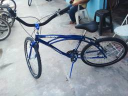 Bicicleta Praianas Novas