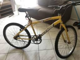 Bicicleta Wendy ( médio porte ) R$ 150,00