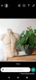 Título do anúncio: Manequim de busto usado masculino